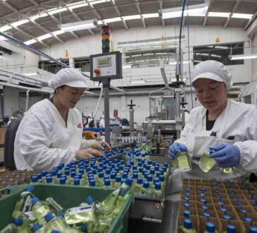 Cerescos, la compañía colombiana para el cuidado de manos y pies, llegó al comercio electrónico en Estados Unidos con su marca de esmaltes Masglo
