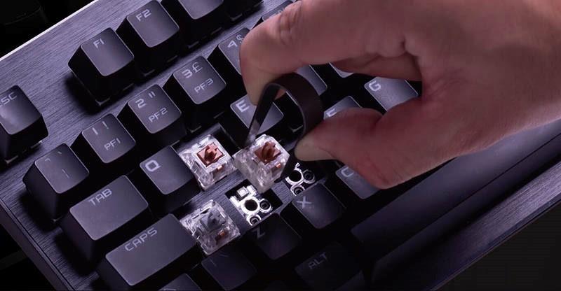 EVGA anunció de manera oficial sus nuevos teclados mecánicos Z15 y Z20, equipados con las últimas tecnologías